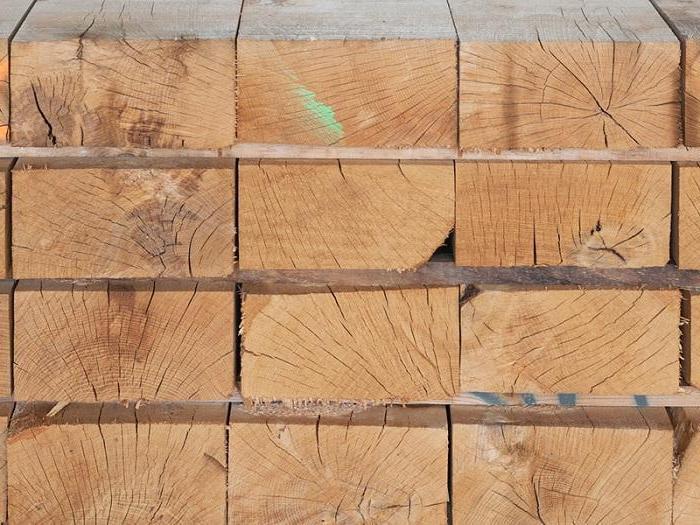 Caracteristicas de las maderas duras